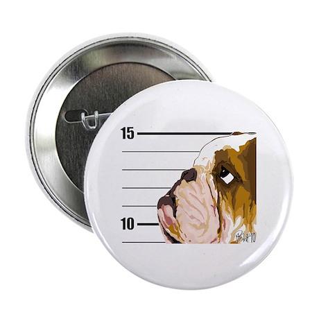 "Bulldog 2.25"" Button (100 pack)"
