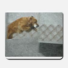 Golden ROH Mousepad