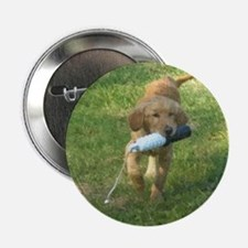 "Puppy with Bumper 2.25"" Button"