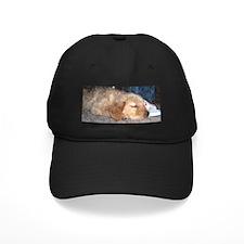 Puppy Sleeping Baseball Hat