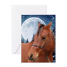 Arabian Horse Xmas Card