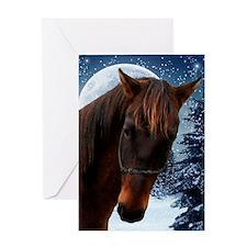 Quarter Horse Xmas Card