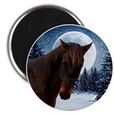 Quarter Horse Winter Magnet