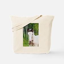 """Irish Cob 6"" Tote Bag"