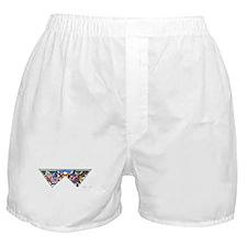 Revolution Kites Boxer Shorts
