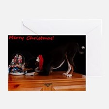 Tri Color Christmas Greeting Cards (Pk of 20)