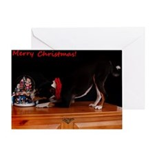 Tri Color Christmas Greeting Card