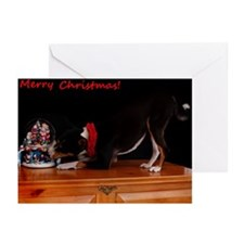 Tri Color Christmas Greeting Cards (Pk of 10)