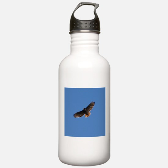 Red-Tailed Hawk Sports Water Bottle