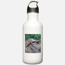Ensatina Salamander Water Bottle