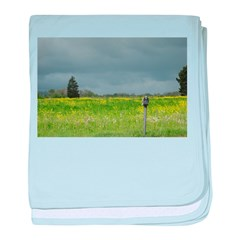 Mailbox and Field Scenic baby blanket