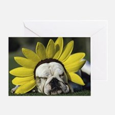 BULLDOG SUNFLOWER Greeting Card