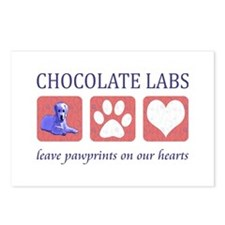 Chocolate Lab Pawprints Postcards (Package of 8)