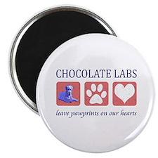 Chocolate Lab Pawprints Magnet
