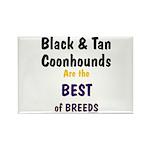 Black & Tan Coonhound Best Breed Rectangle Magnet