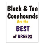Black & Tan Coonhound Best Breed Small Poster