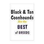 Black & Tan Coonhound Best Breed Mini Poster Print