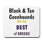 Black & Tan Coonhound Best Breed Mousepad