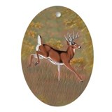 Whitetail deer Ornaments
