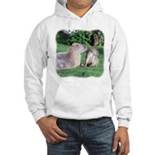 Capybara Mom and Son Hoodie