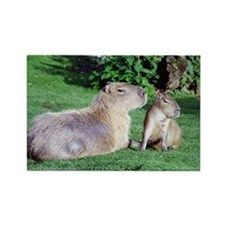 Capybara Mom and Son Rectangle Magnet