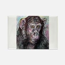 Chimp, striking, adorable, Rectangle Magnet