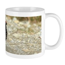 Male spruce grouse 2 Mug