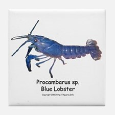 Blue Lobster Tile Coaster