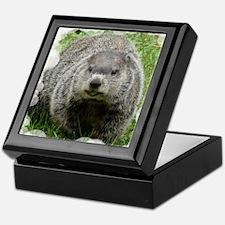 Groundhog (Woodchuck) Keepsake Box