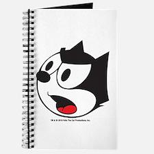 Felix Yelling Journal
