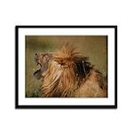 Lion Roar Framed Panel Print