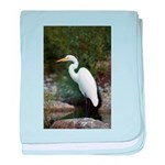 Great Egret baby blanket
