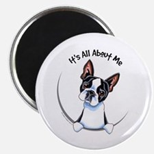 Boston Terrier IAAM Magnet