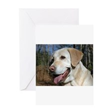 Cute Labrador dog Greeting Card