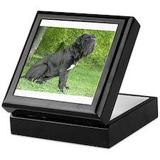 Cute Neapolitan mastiff Keepsake Box