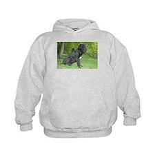 Unique Neapolitan mastiff Hoodie