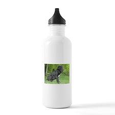 Unique Neapolitan mastiff Water Bottle