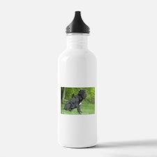 Funny Mastino Water Bottle