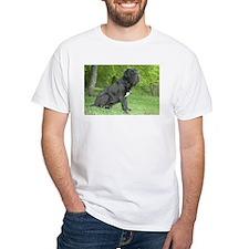 Cute Intimidating Shirt