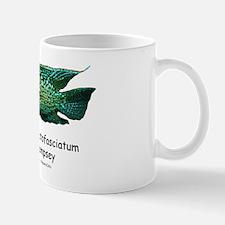 Cichlasoma octofasciatum Mug