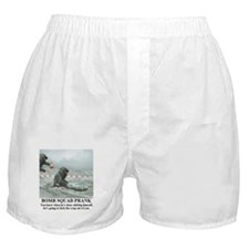 Cute Prank Boxer Shorts