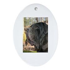 Cool Mastino Ornament (Oval)