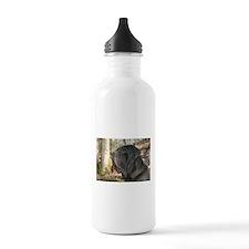 Cute Neapolitan mastiff Water Bottle
