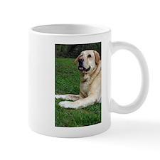 Funny Labrador large Mug