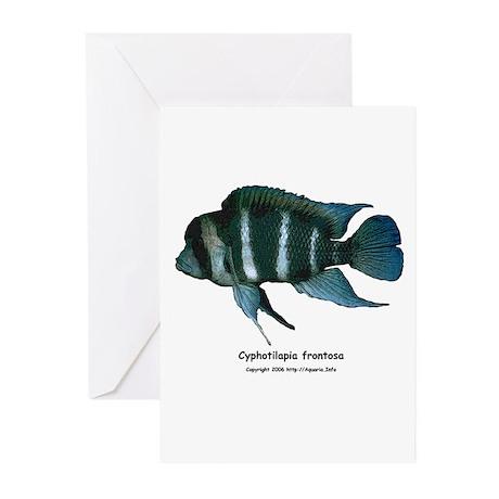 Cyphotilapia frontosa Greeting Cards (Pk of 10