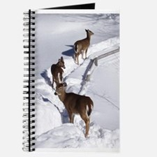 Deer Journal