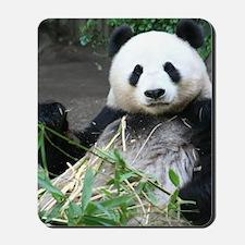 Mousepad-Panda