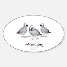 african grey parrot Decal