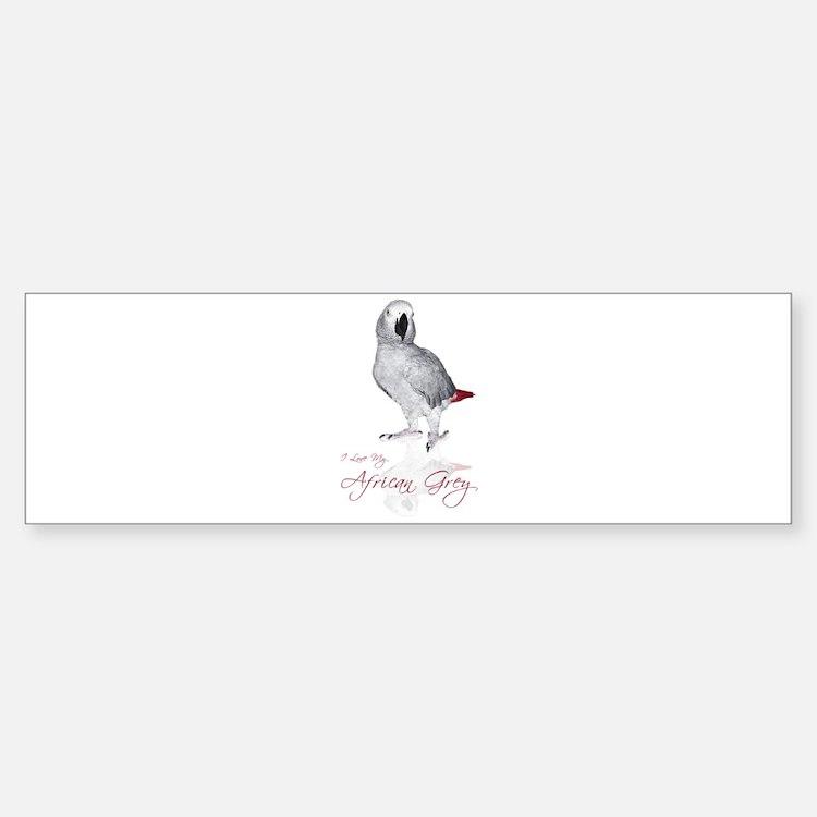i love my african grey Bumper Bumper Sticker