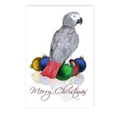 African grey christmas Postcards